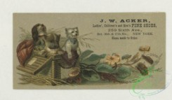 prang_cards_animals-00269 - 1739-Trade cards depicting puppies, kittens, birds, an owl, a peacock, baskets, flowers, leaves and the moon 103399