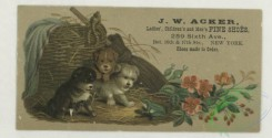 prang_cards_animals-00270 - 1739-Trade cards depicting puppies, kittens, birds, an owl, a peacock, baskets, flowers, leaves and the moon 103400