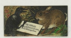 prang_cards_animals-00287 - 1788-Trade cards depicting a painter, an easel, a fly, flowers, a crow, a rabbit, birds, sailboats, ducks and a violinist 103688
