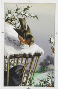 prang_cards_birds-00003 - 0058-Christmas and New Year cards depicting winter scenes with dogs, cats, birds, and horses 106842