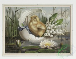 prang_cards_birds-00020 - 0141-Easter cards depicting chicks, birds, feathers and an ornamental plant design 101713