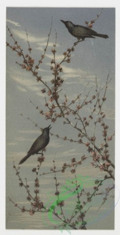prang_cards_birds-00043 - 0210-Birthday cards depicting birds perched on tree branches 104063