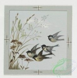 prang_cards_birds-00045 - 0212-Valentines and Easter cards depicting birds, butterflies, and flowers 104071