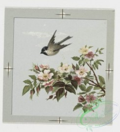 prang_cards_birds-00048 - 0212-Valentines and Easter cards depicting birds, butterflies, and flowers 104074