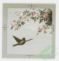 prang_cards_birds-00049 - 0212-Valentines and Easter cards depicting birds, butterflies, and flowers 104075