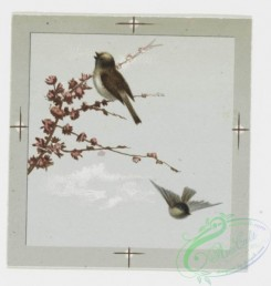 prang_cards_birds-00050 - 0212-Valentines and Easter cards depicting birds, butterflies, and flowers 104076