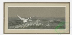 prang_cards_birds-00058 - 0224-Christmas and New Year cards depicting birds and ocean scenes 104143