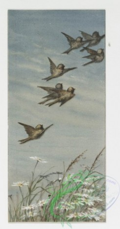 prang_cards_birds-00068 - 0248-Christmas and New Year cards depicting birds in flight, snowy landscapes, and children 104306
