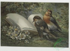 prang_cards_birds-00077 - 0260-Birthday, Christmas, and Valentine cards depicting birds, flowers, and plants 104398