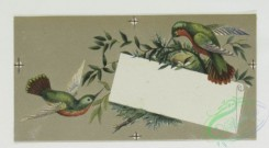 prang_cards_birds-00078 - 0282-Valentine, Christmas, and New Year cards with colorful birds and flowers 104574