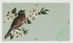 prang_cards_birds-00086 - 0296-Birthday cards depicting birds, flowers, and food, including fruit, fish, and a turkey 104735
