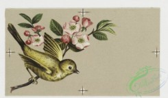prang_cards_birds-00088 - 0296-Birthday cards depicting birds, flowers, and food, including fruit, fish, and a turkey 104737