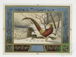 prang_cards_birds-00091 - 0300-Cards with decorative borders, depicting pheasants in the snow and by a lake 104773