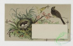 prang_cards_birds-00100 - 0316-Trade card for Florida Water perfume company, with depictions of flower, birds, and women brushing hair 104957