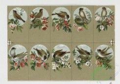 prang_cards_birds-00106 - 0328-Small prints depicting flowers and birds 105083