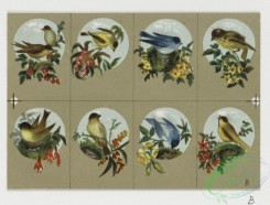 prang_cards_birds-00107 - 0328-Small prints depicting flowers and birds 105084