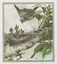 prang_cards_birds-00115 - 0363-Easter and text cards depicting girls, nests, birds, stars and flowers 105299