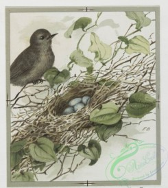 prang_cards_birds-00116 - 0363-Easter and text cards depicting girls, nests, birds, stars and flowers 105300