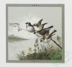 prang_cards_birds-00118 - 0388-Easter, Valentine, and birthday cards depicting birds and flowers 105464