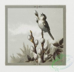 prang_cards_birds-00119 - 0388-Easter, Valentine, and birthday cards depicting birds and flowers 105465