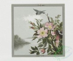 prang_cards_birds-00120 - 0388-Easter, Valentine, and birthday cards depicting birds and flowers 105466