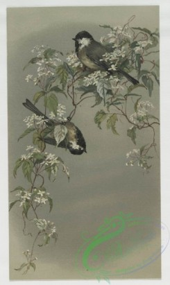 prang_cards_birds-00129 - 0419-Easter cards depicting birds and butterflies on tree branches 105681