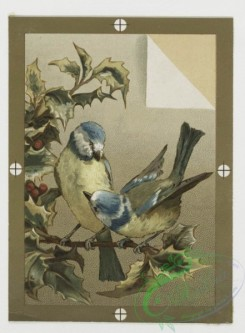 prang_cards_birds-00134 - 0434-Christmas, New Year, and birthday cards depicting flowers and birds 105794