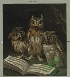 prang_cards_birds-00149 - 0477-Christmas cards depicting cats reading, bears dancing, owls singing, tortoise, and hare 106103