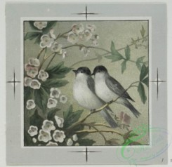 prang_cards_birds-00151 - 0485-Valentines and birthday cards depicting birds, flowers, landscapes 106150