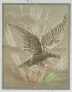 prang_cards_birds-00165 - 0565-Easter, Christmas, and New Year cards depicting a bird with sunrays, and flowers 106643