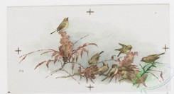 prang_cards_birds-00179 - 0880-Calendar and Christmas cards depicting ladies, ribbons, flowers, and birds on trees, in the rain, in water 108125