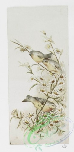 prang_cards_birds-00187 - 1066-Easter cards depicting birds and flowers, including buttercups and violets 100259