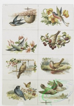 prang_cards_birds-00192 - 1159-Valentines, Christmas and text cards depicting girls, flowers, seasons, fruit, landscapes, houses, windmills, birds, rivers, mountains and trees 100565