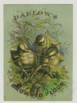 prang_cards_birds-00200 - 1381-Trade cards depicting flowers, a house, chicks, bees and a pigeon delivering a letter to a woman 101500