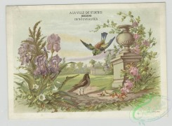 prang_cards_birds-00208 - 1419-Trade cards depicting birds, flowers, a stone fence with decorative columns, a barbershop, scissors and hair 101711