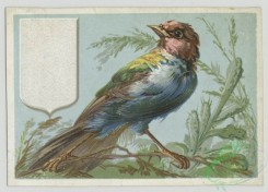 prang_cards_birds-00210 - 1444-Cards depicting birds 101860