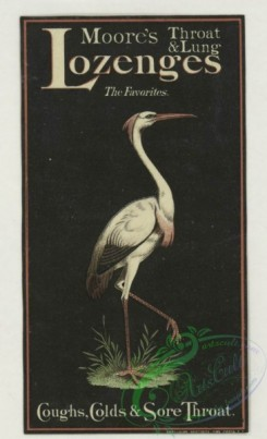 prang_cards_birds-00237 - 1777-Trade cards depicting flowers, strawberries, a turtle, a stork, thread, lily pads, a boy picking cotton and a girl sewing 103625