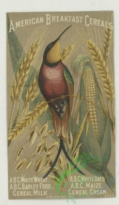 prang_cards_birds-00244 - 1789-Trade cards depicting men, a woman, flowers, a bird, corn, a canoe, a river, a broom and advertisements 103697