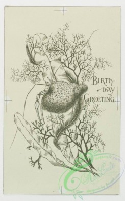 prang_cards_black-and-white-00056 - 0244-Birthday cards depicting maritime and lake scenes, sailboats, seaweed, fish, starfish, a lighthouse and fans 104277