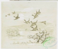 prang_cards_black-and-white-00058 - 0245-Christmas, New Year, Easter, and birthday cards depicting birds, nests, butterflies, trees, and flowers 104289