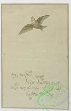 prang_cards_black-and-white-00110 - 0370-Birthday cards depicting women and owls in the sky with the moon, setting sun and clouds behind them 105339