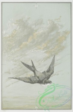 prang_cards_black-and-white-00181 - 0426-Easter cards depicting bird in flight, wooden cross decorated with flowers 105732