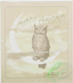 prang_cards_black-and-white-00230 - 0477-Christmas cards depicting cats reading, bears dancing, owls singing, tortoise, and hare 106105