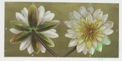 prang_cards_botanicals-00008 - 0151-Birthday cards with decorative borders, depicting flowers, lily pads, clovers and the harvest 102191