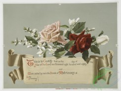 prang_cards_botanicals-00025 - 0377-(A marriage certificate with illustrations of flowers.) 105368