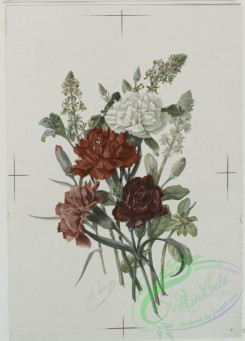 prang_cards_botanicals-00036 - 0486-Flowers 106161