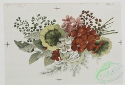 prang_cards_botanicals-00044 - 0498-Christmas, birthday, and Valentine cards depicting flowers 106256