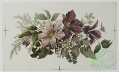 prang_cards_botanicals-00048 - 0502-Easter and Christmas cards depicting flowers 106306