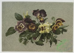 prang_cards_botanicals-00063 - 0524-Christmas and Easter cards depicting pansies and decorative design utilizing plant forms 106431