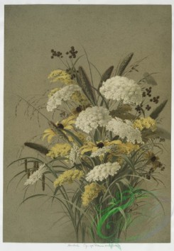 prang_cards_botanicals-00084 - 0594-Hemlock oy-eye daisies and grasses 106858